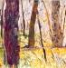 Bois N° 5 90x90cm