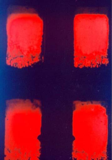 08-aux-quatre-coins-rouges