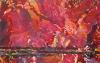 tapis_rouge_1-65x100cm